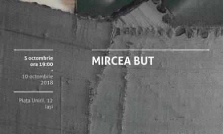 Mircea But și Cătălin Rulea expun la Iași de Noaptea Albă a Galeriilor