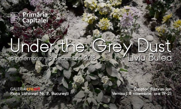 "Liviu Bulea ""Under the Grey Dust"" @ Galeria creart, București"