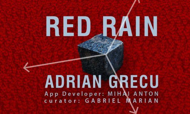 """Adrian Grecu """"Red Rain"""" @ Galeria Nano, Centrul de Interes, Cluj"""