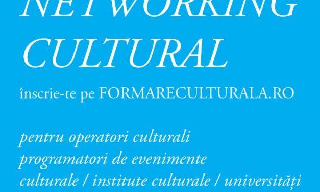 Dezvoltare comunitară prin formare culturală: networking cultural și publicație de bune practici