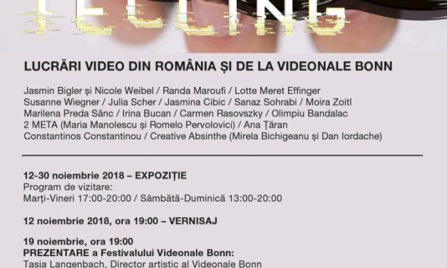 STORY TELLING – Lucrări video din România și de la Videonale Bonn