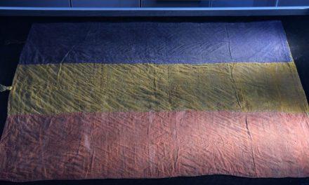 Steagul delegaței din Lupșa