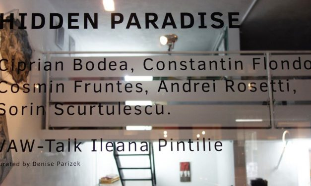 "NOIMA ""Hidden Paradise"" la Vienna Art Week 2018"