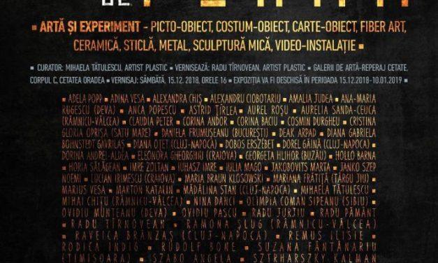 """Expoziţia de artă şi experiment """"Dincolo de formă"""" @ Galerii de Artă-Reperaj, Cetatea Oradea"""