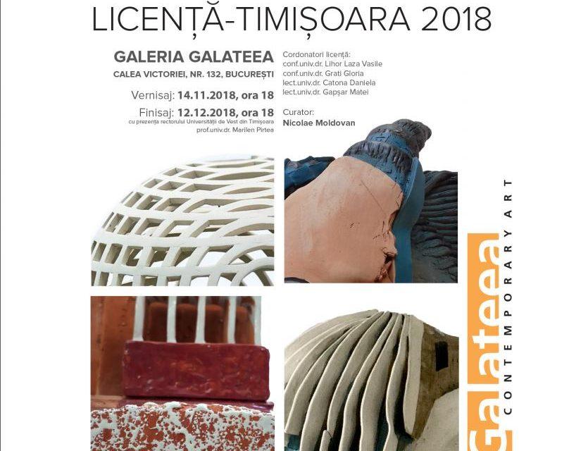 FinisajulexpozițieiLICENȚĂ – TIMIȘOARA 2018 @ Galateea Contemporary Art, București