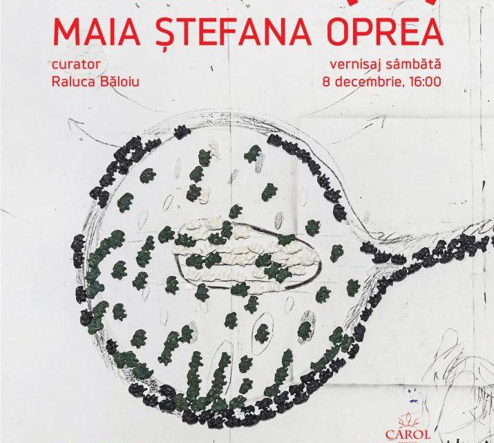 """Maia Ștefana Oprea """"NEST(S)"""" @ Centrul Cultural """"Palatele Brâncovenești de la Porțile Bucureștiului"""""""