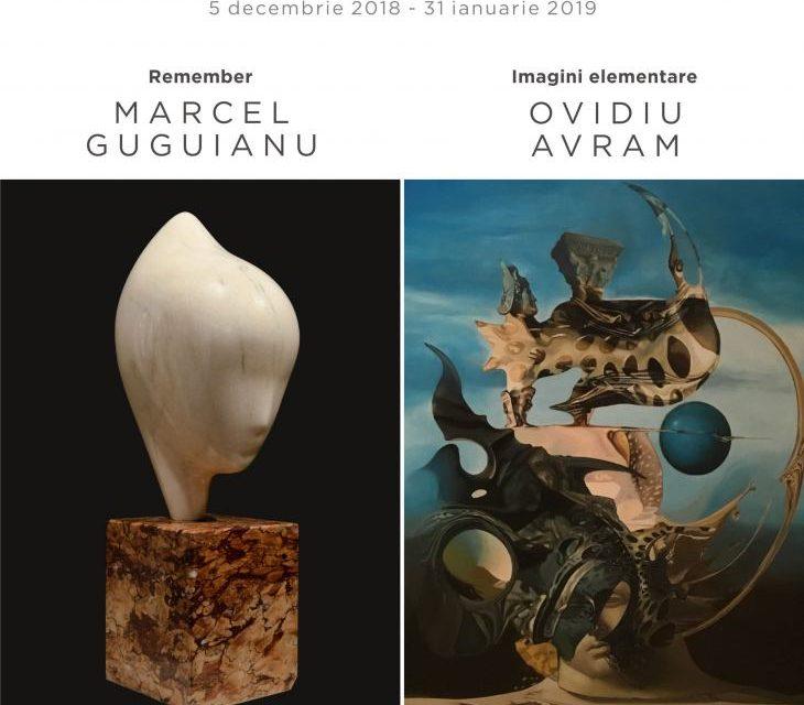"""Expoziții decembrie: Ovidiu Avram – """"Imagini elementare"""" și Marcel Guguianu – """"Remember"""" @ Art Yourself Gallery, București"""