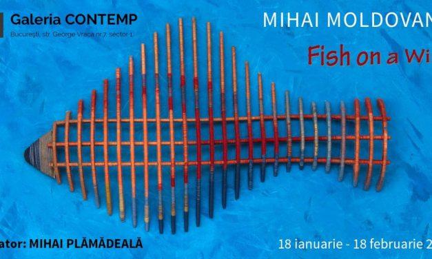 """Expoziţie Mihai Moldovanu """"Fish on a Wire"""" @ Galeria CONTEMP, București"""