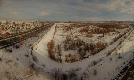 Parcul Natural Văcărești – iarna (I)
