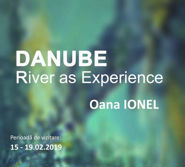 """Expoziţie personală Oana Ionel """"Danube- River as Experience"""" @ Institutul Cultural Român"""