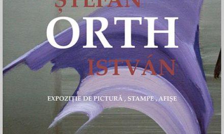 Expoziția personală Ștefan Orth @ Muzeul de Artă Cluj-Napoca