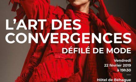 Arta convergenţelor @  Galeria Macadam a Institutului Cultural Român din Paris