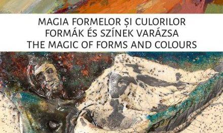 """Expoziție Palkó Csaba și Palkó Ernő """"Magia formelor și culorilor"""" @ Muzeul de Arta Cluj-Napoca"""