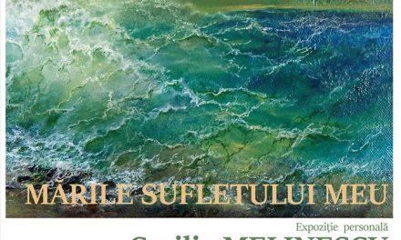 """Expoziție personală Cecilia Melinescu """"Mările sufletului meu @ Muzeul de Arta Cluj-Napoca"""