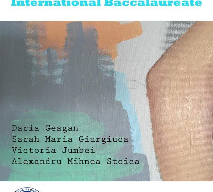 Visual Arts International Baccalaureate @ Metropolis Art Collection, București