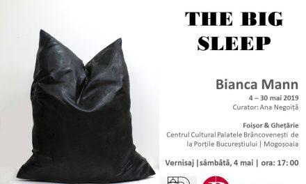 """Expoziție Bianca Mann """"THE BIG SLEEP"""" @ Centrul Cultural """"Palatele Brâncovenești de la Porțile Bucureștiului"""""""