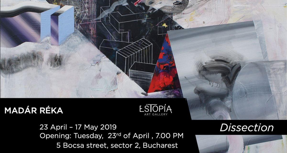 """Expoziție Madár Réka  """"Dissection"""" @ Estopia Art Gallery, București"""
