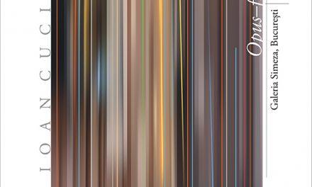 """Expoziție Ioan Cuciurcă """"OPUS-FLASH 3"""" @ Galeria Simeza, București"""