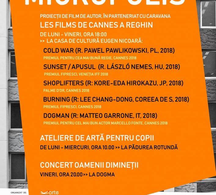 MICROPOLIS, ediția I, 2019 la Reghin