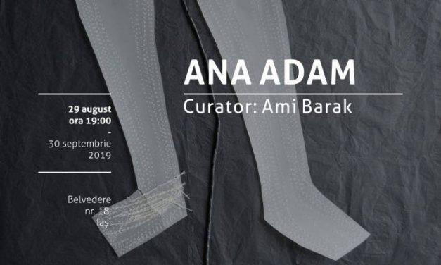 """Expoziție Ana Adam """"Peste fire"""" @ Borderline Art Space, Iași"""