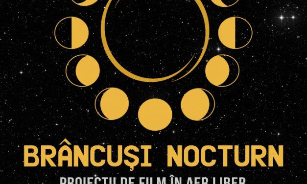Proiecțiile Docuart, ediție specială Constantin Brâncuși @ Târgu-Jiu