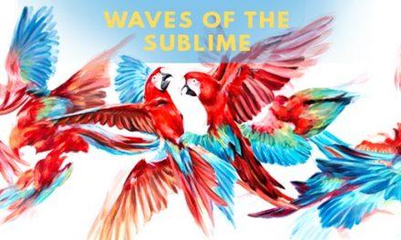 "Expoziție Alexandru Cînean ""Waves of the Sublime"" @ Muzeul Național Brukenthal"