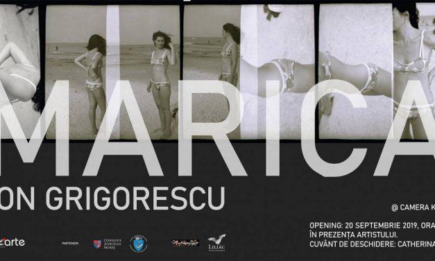 Expoziție Ion Grigorescu la Târgu Mureș
