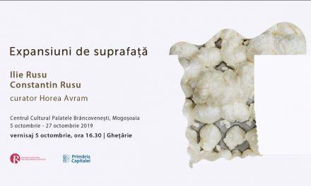 """Expoziție Ilie Rusu, Constantin Rusu """"Expansiuni de suprafață"""" @ Centrul Cultural """"Palatele Brâncovenești de la Porțile Bucureștiului"""""""