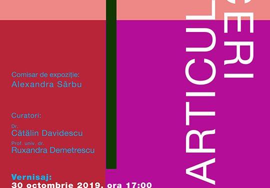 """Expoziție Marcel Bunea """"Tăceri articulate"""" @ Muzeul de Artă Cluj-Napoca"""
