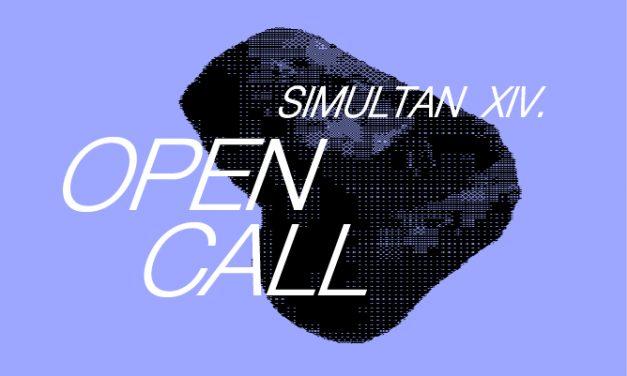 În căutare de artiști: Asociația SIMULTAN a lansat apelul pentru lucrări video în cadrul festivalului