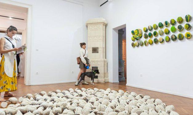 Lidó Rico – Brain inside(out) @ Galeriile Carol