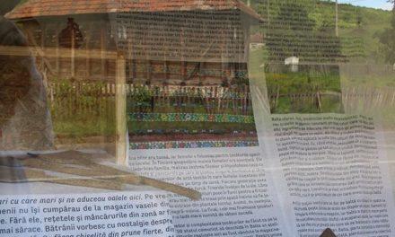 Bilanțul programului cultural Ecomuzeul Balta la final de 2019