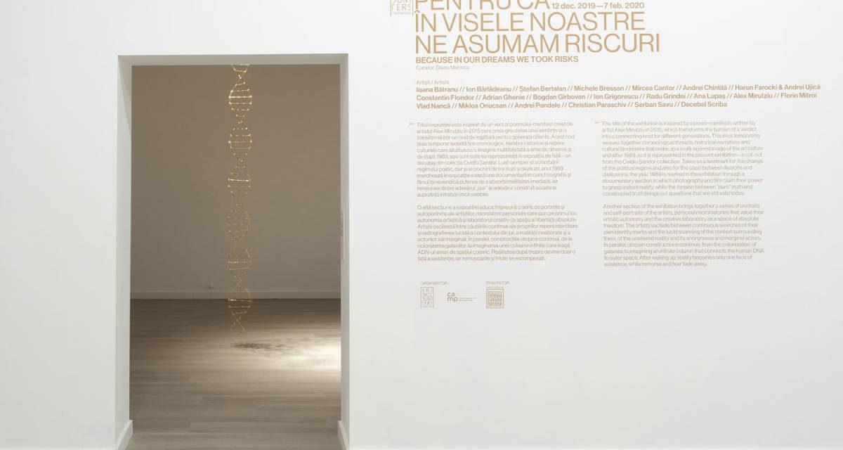 """Expoziție """"Pentru că în visele noastre ne asumam riscuri"""" @ Fundația Art Encounters, Timișoara"""