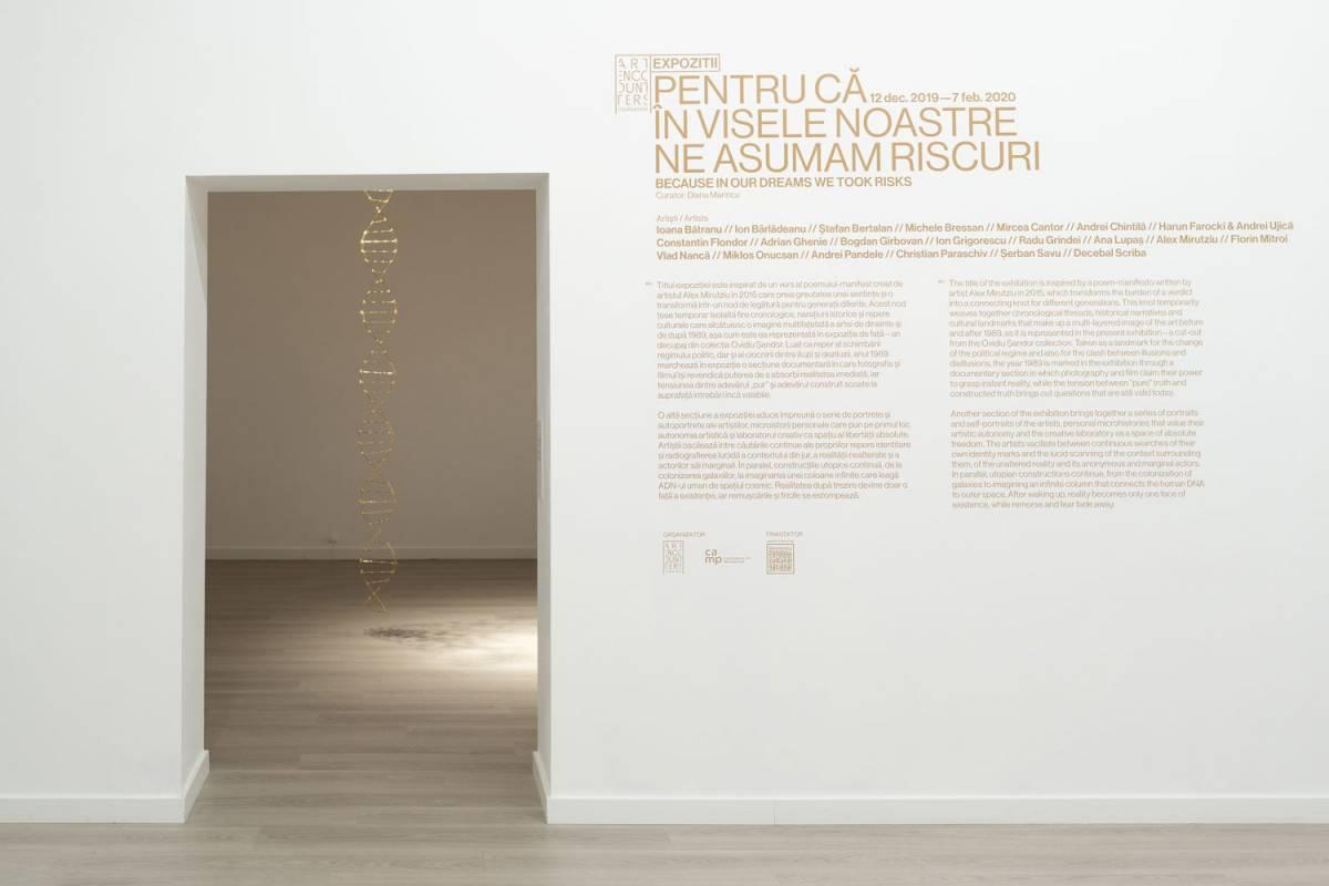 Imagine din expoziție: Mircea Cantor. Credit foto: infi.ro