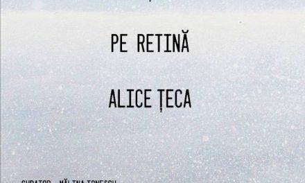 """Expoziție Alice Țeca,""""PERSISTENȚA LUMINII PE RETINĂ"""" @ Centrul Cultural """"Palatele Brâncovenești de la Porțile Bucureștiului"""""""