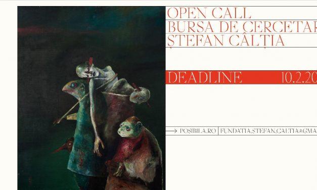 Open Call / Bursa Ștefan Câlția