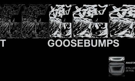 "Expoziție Anastasia Calinovici, ""Soft Goosebumps"" @ ETAJ – artist run space, București"