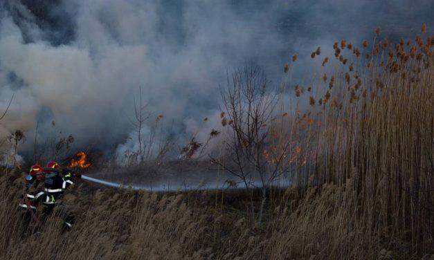 NU vă jucați cu focul!!! @ Parcul Natural Văcărești