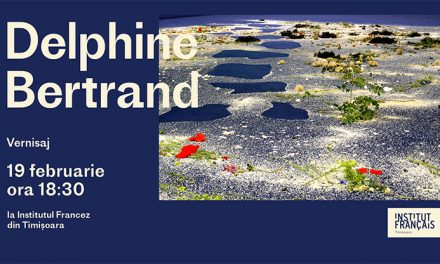Vernisaj & artist talk cu Delphine Bertrand