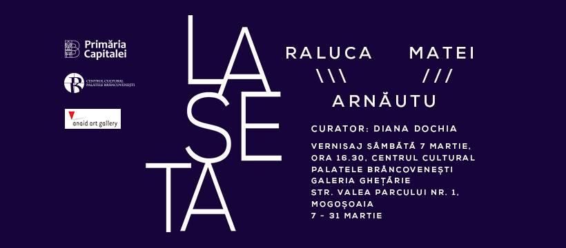 """Expoziţia instalație""""Laseta""""de Raluca și Matei Arnăutu @ Centrul Cultural Palatele Brâncovenești, Mogoșoaia"""