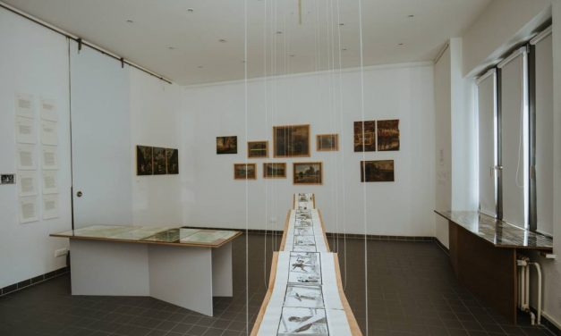 "Expoziția ""Transylvania Retouched. A matter of landscape and representation"", vernisată la Budapesta"