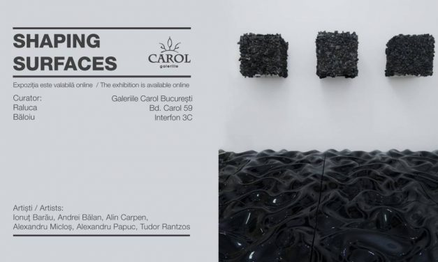 "Expoziția online ""Shaping Surfaces"" @ Galeriile Carol"