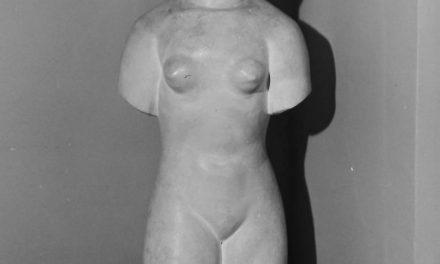 Muzeul Medrea, 1985