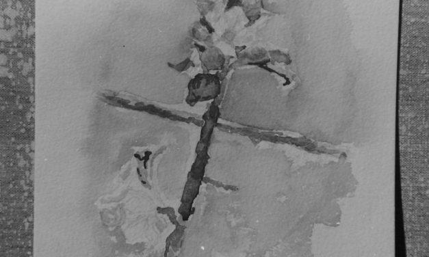 Pictorul Horea Paștina, 1976