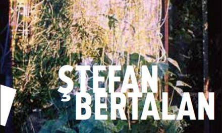 Apariție de carte: Ileana Pintilie, Ștefan Bertalan. Visuelle Strukturen (1960-2000) la editura Kultur. West din Essen