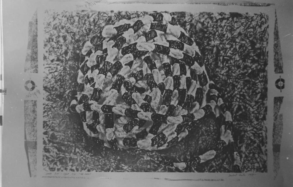 Graficianul Decebal Scriba, 1977