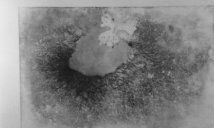 Puia Hortensia Masichievici, 1978