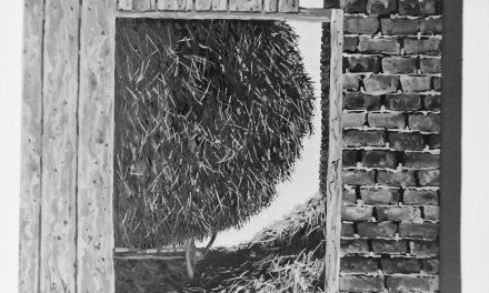 Pictorul Ion Dumitriu, 1985