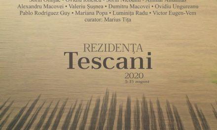 """Tabăra Internațională de creație """"Rezidența Tescani"""" 2020"""