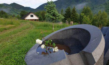 Ikebana @ land art – MAXONIA